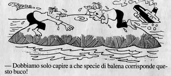 naufraghi-balena