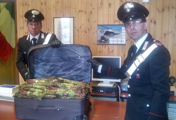 carabinieri-khat